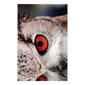 Red-Eyed Owl Stationery