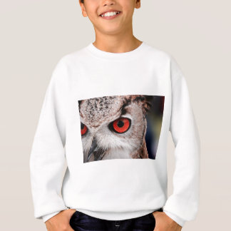 Red-Eyed Owl Sweatshirt