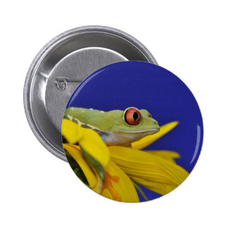 red eyed tree frog 6 cm round badge