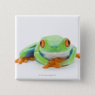 Red-Eyed Tree Frog (Agalychnis Callidryas) 2 15 Cm Square Badge