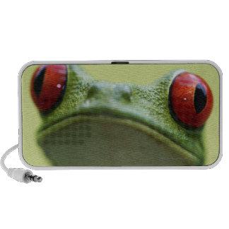 Red-eyed tree frog (Agalychnis callidryas) 2 Mini Speaker