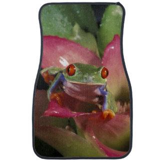 Red-eyed tree frog Agalychnis callidryas) Car Mat