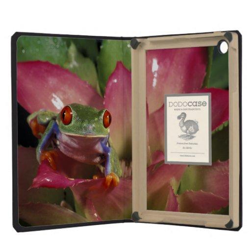 Red-eyed tree frog Agalychnis callidryas) iPad Mini Retina Cover