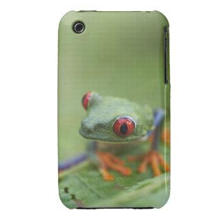 Red-eyed tree frog (Agalychnis callidryas) iPhone 3 Cases