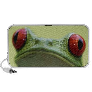 Red-eyed tree frog (Agalychnis callidryas) iPod Speaker