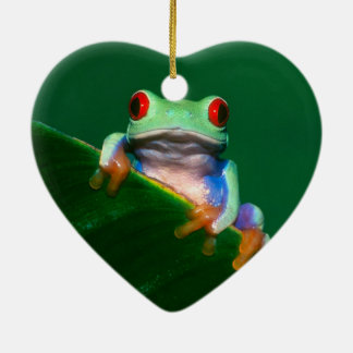 Red Eyed Tree Frog Ceramic Ornament