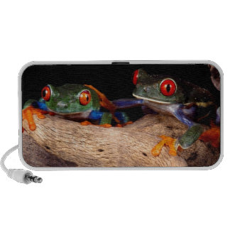 Red Eyed Tree Frogs Mp3 Speakers