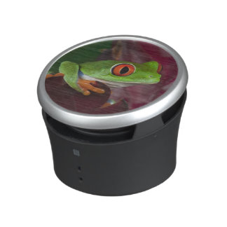 Red-eyed treefrog speaker