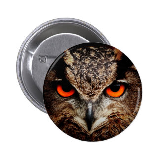 Red Eyes Eagle Owl Pins