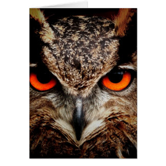 Red Eyes Eagle Owl Greeting Cards