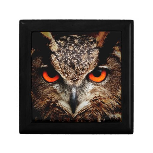 Red Eyes Eagle Owl Trinket Box