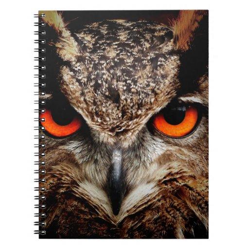 Red Eyes Eagle Owl Spiral Notebook