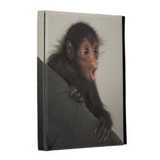 Red-faced Spider Monkey Ateles paniscus) iPad Cases