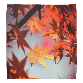 Red Fall Autumn Leaves Maple Tree Bandana