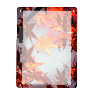 Red Fall Autumn Leaves Maple Tree Dry Erase Board