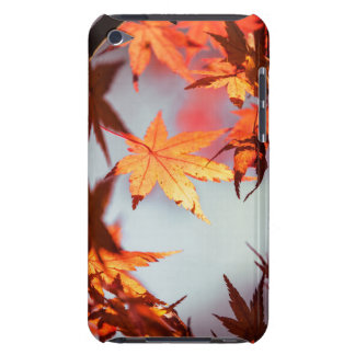 Red Fall Autumn Leaves Maple Tree iPod Case-Mate Cases