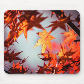 Red Fall Autumn Leaves Maple Tree Mouse Pad