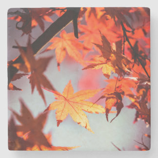 Red Fall Autumn Leaves Maple Tree Stone Coaster