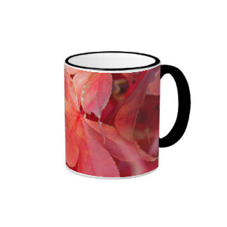 Red Fall Leaves Mugs