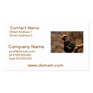 Red Fan Parrot Business Cards