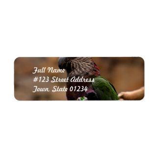 Red Fan Parrot Return Address Label