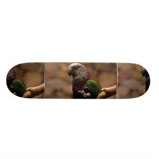 Red Fan Parrot Skateboard