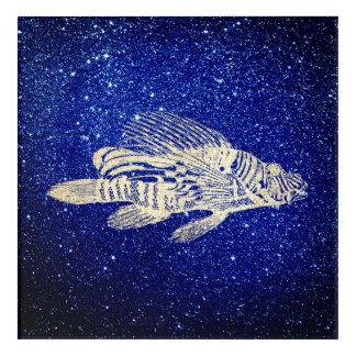 Red Fish Sea Life Blue Golden Foxier Navy Aqua Acrylic Wall Art