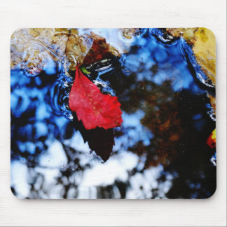 Red floating fall leaf with reflection of blue sky mouse pads