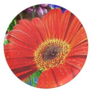 Red floral photo plate