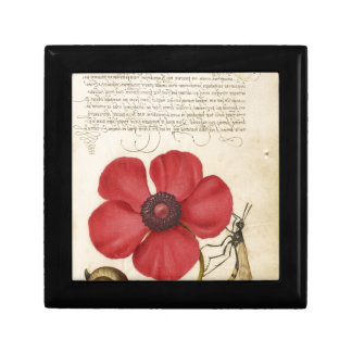 Red Flower And Snail Small Square Gift Box