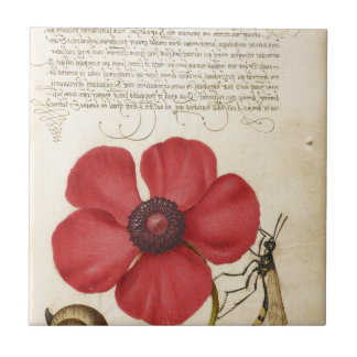 Red Flower And Snail Small Square Tile
