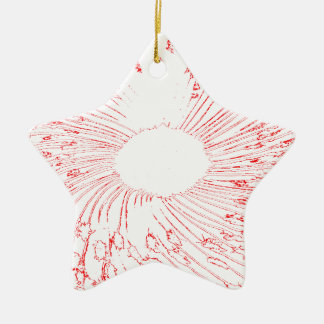 red flower ceramic star decoration