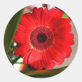 Red Flower Classic Round Sticker