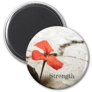 Red Flower In Desert Strength Magnent Magnet