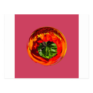Red flower in glass globe postcard