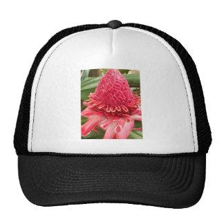 Red Flower.jpg Hat