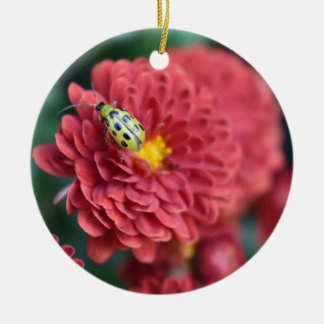 Red Flower Nature Photography Beetle Insect Bug Ceramic Ornament