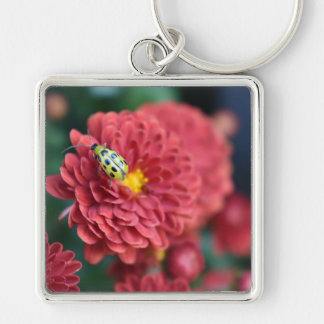 Red Flower Nature Photography Beetle Insect Bug Key Ring