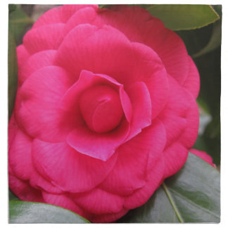 Red flower of Camellia japonica Rachele Odero Napkin
