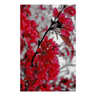 Red Flower Poster - Light Grey Backdrop