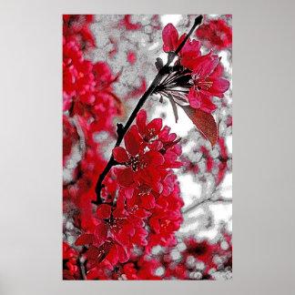 Red Flower Poster - Light Grey Backdrop