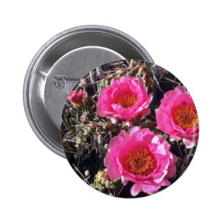 Red-Flower Prickly Pear Cactus flowers Pinback Buttons