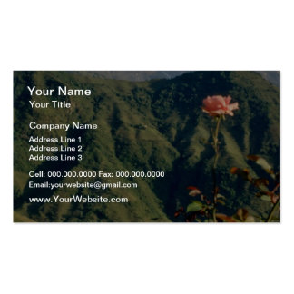 Red flowers blooming wall to wall business card templates