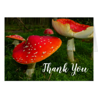Red Fly Agaric Mushroom Thank You Blank Photo Note Card