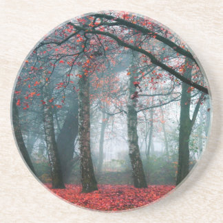 Red Forest Coasters