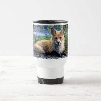Red fox beautiful photo portrait mug, gift travel mug