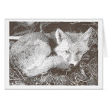 Red Fox Drawing Greeting Card