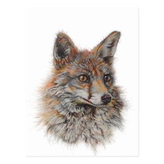 red fox face art postcard