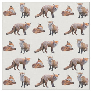Red Fox Frenzy Fabric (choose colour)