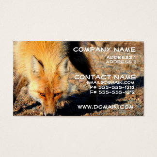 Red Fox Habitat Business Card